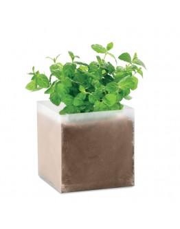 Bolsas de semillas de menta / Regalos Publicitarios Ecologicos