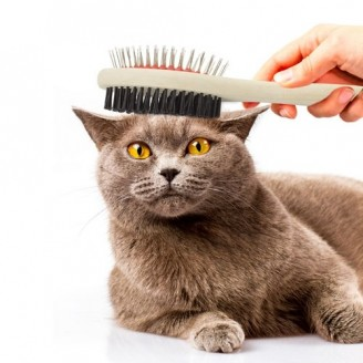 Cepillo para mascotas Nina / Cepillos para perros Promocionales Baratos
