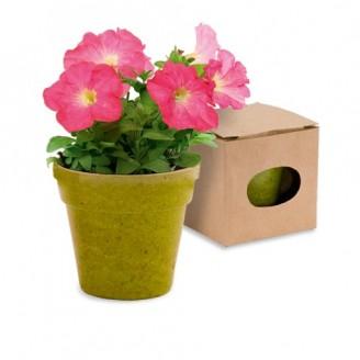 Maceta Advert. 5-8 Semillas de Petunia Incluidas. Flores Colores Surtidos. Macetero Biodegradable