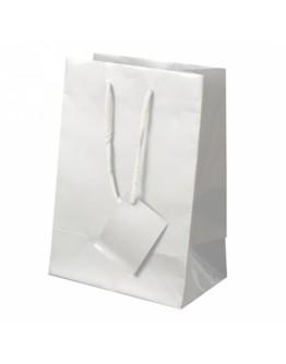 Bolsa regalo papel 23x16x10 cm