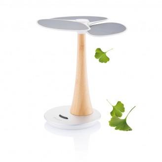 Ginkgo árbol solar